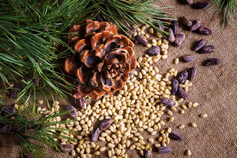 Kedarkona med skalade nötter på bordet arkivbilder