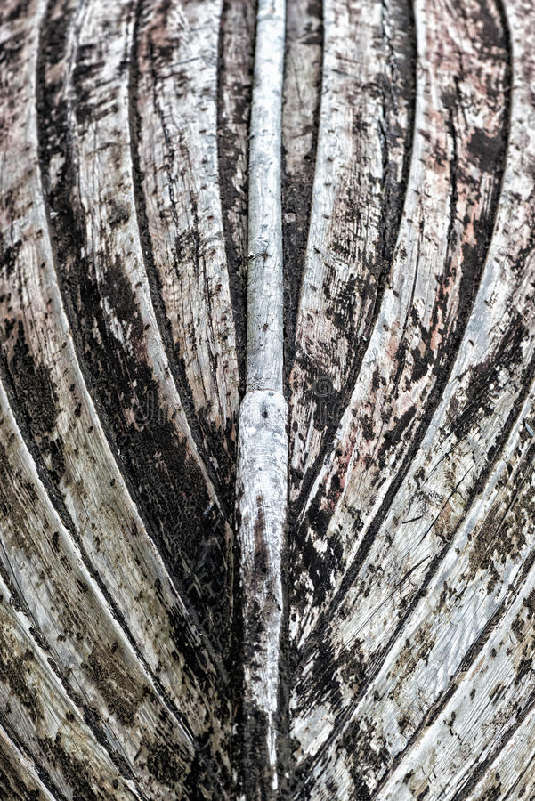 Download Keel of a wooden boat stock image. Image of colour, shingle - 31900771