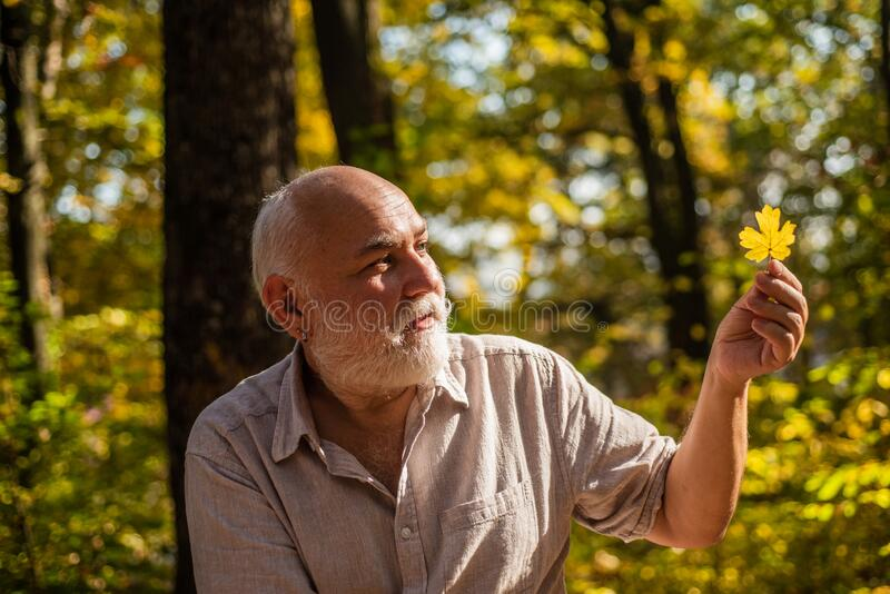 Keep cheerfulness. Pensioner hiking in forest on sunny autumn day. Happy man enjoy autumn nature. Bearded grandfather. Relaxing in forest. See beauty in simple stock image