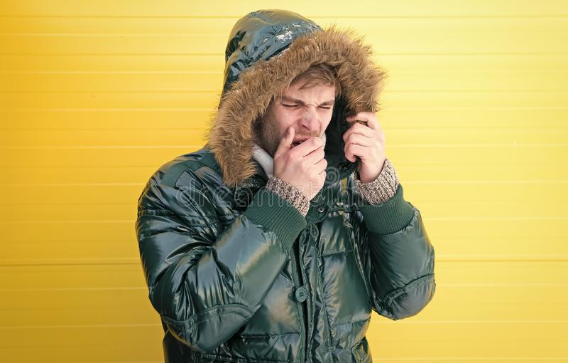 Keep warm. Winter stylish menswear. Man bearded hipster wear warm jacket with fur yellow background. Guy wear warm. Jacket with hood. Feel comfortable in warm stock photos