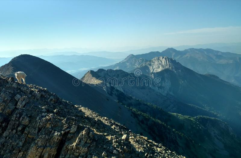 Keeper of the Mountains stock photography