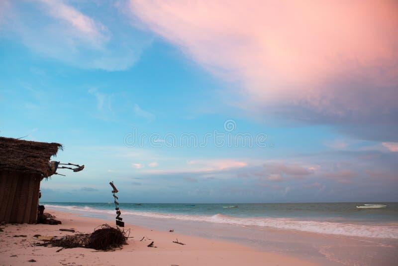 Keet op strand met mooie zand en hemel royalty-vrije stock fotografie