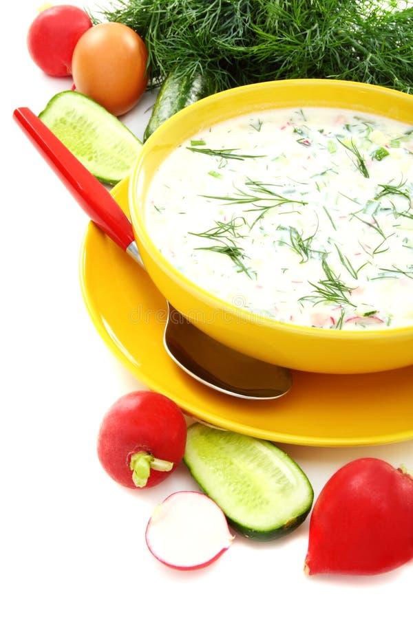 Kefir frio da sopa do verão fotografia de stock