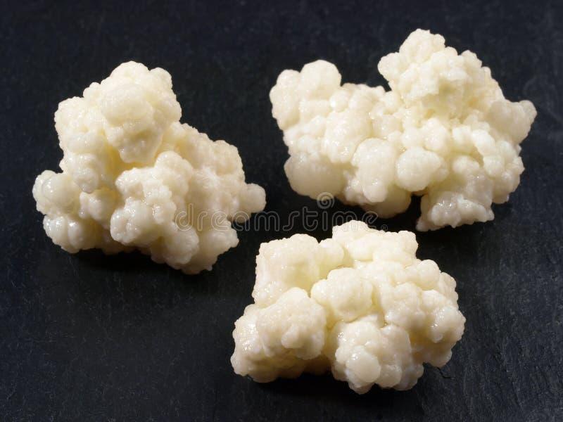 Kefir - nutrizione sana fotografie stock