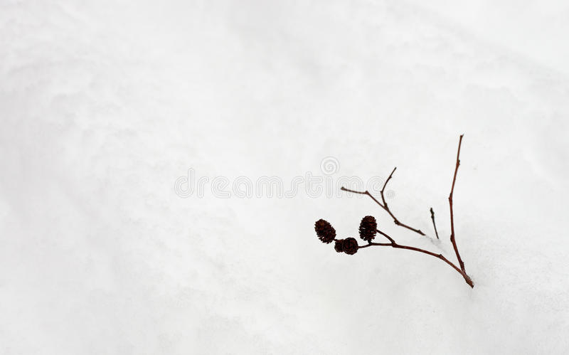 Kegel im Schnee lizenzfreies stockbild
