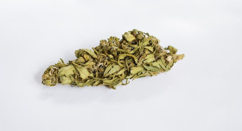 Kegelsmarihuana - cannabisinstallaties, medisch verdovingsmiddel stock foto