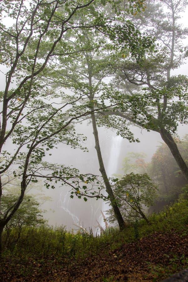 Kegon faller i misten, den Nikko nationalparken nära staden av Nikko, Tochigi Japan arkivfoto