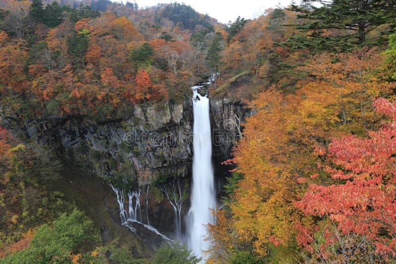 Kegon faller med höstsidor i Nikko, Japan. royaltyfria bilder