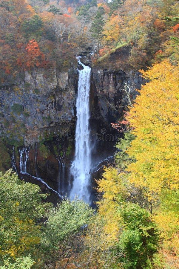 Kegon nedgångar i NIkko, Japan. royaltyfri fotografi