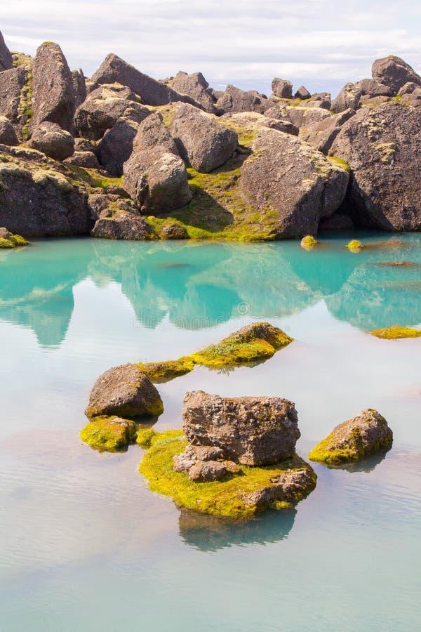 Kei in groene pool wordt weerspiegeld die stock foto
