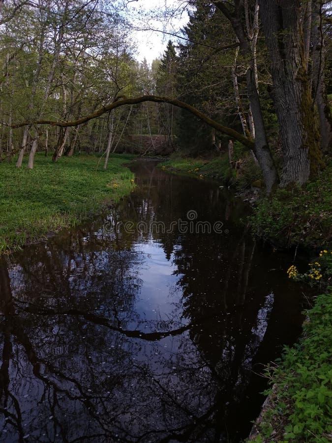 Keila flod fotografering för bildbyråer