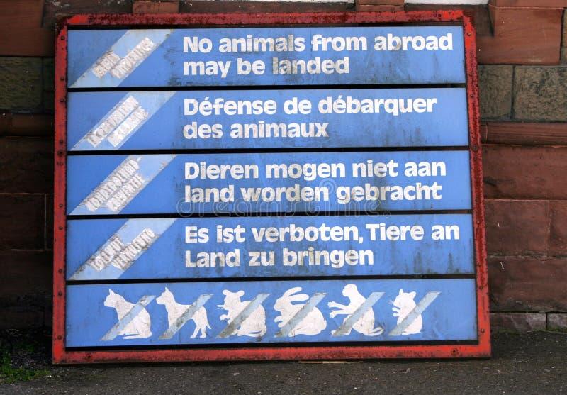 Kein Tier aus dem Ausland stockbild