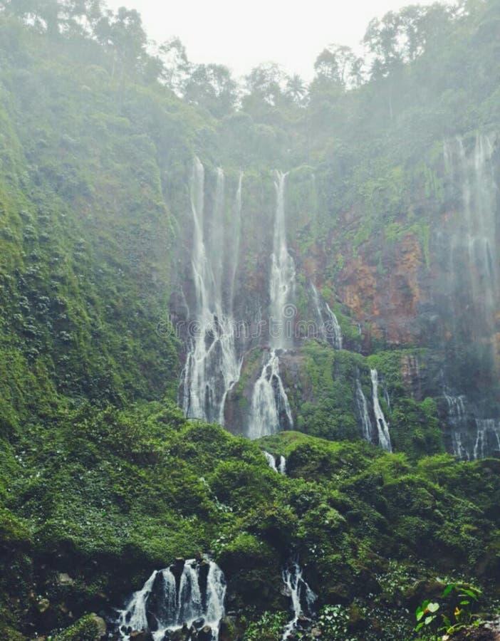coban sewu waterfall stock photos