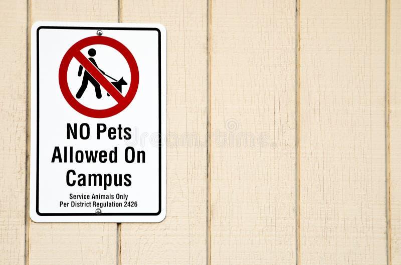 Keine Haustiere Zeichen erlaubt lizenzfreie stockfotografie