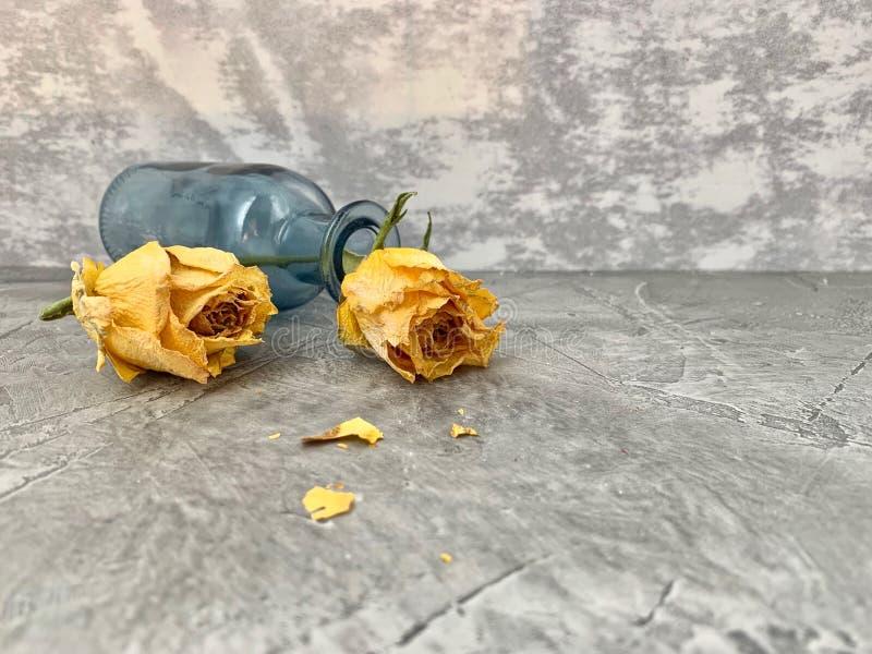 Keine Liebe Gelbe Rosen trockneten und fielen in eine blaue Glasflasche, stockfotografie