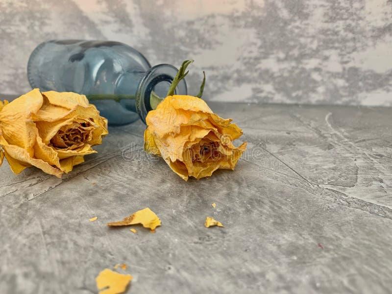 Keine Liebe Gelbe Rosen trockneten und fielen in eine blaue Glasflasche, lizenzfreie stockfotos
