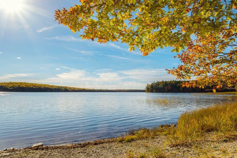 Kejimkujik jezioro w spadku od Jeremy zatoki obozowiska zdjęcia royalty free