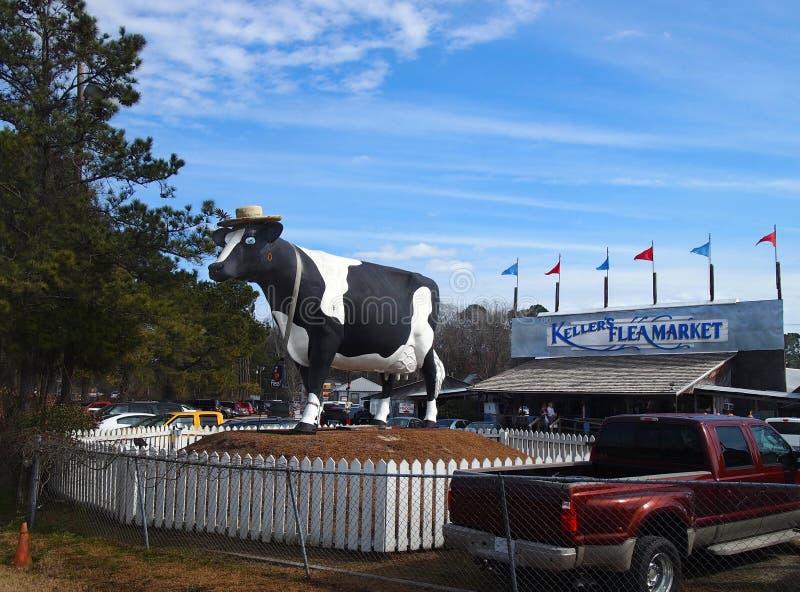 Keller krowa i pchli targ zdjęcia stock