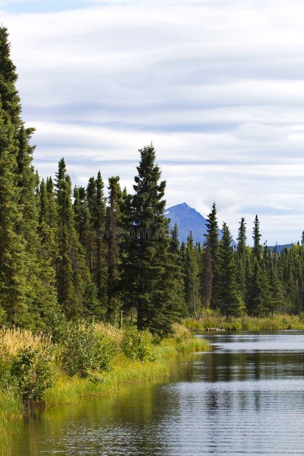 Kelly Lake, parte de la reserva nacional de Kenail, en v escénico imagen de archivo libre de regalías