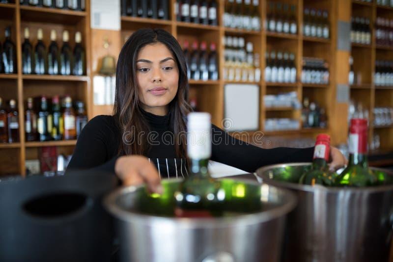 Kelnerka patrzeje wiadro piwna butelka obraz royalty free
