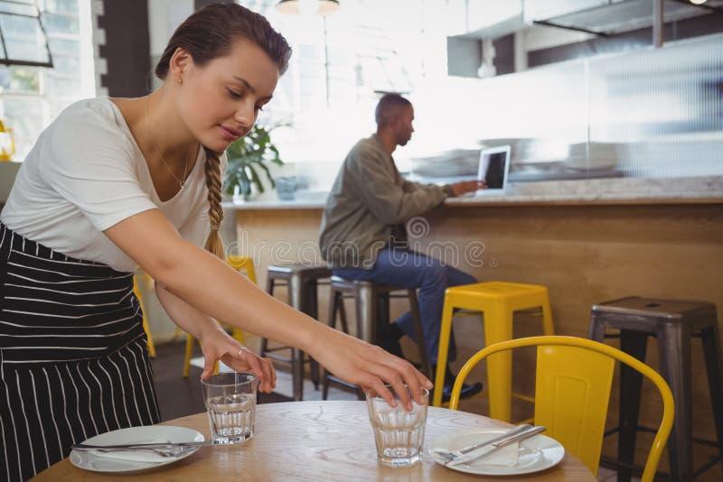 Kelnerka układa szkła z biznesmenem używa laptop fotografia royalty free