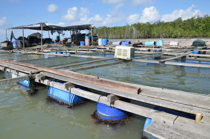 Kelong, plataforma a pouca distância do mar foto de stock