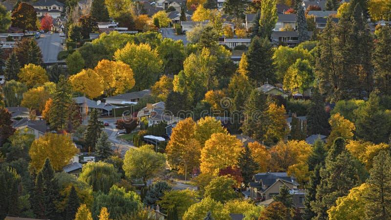 Kelowna bostadsområde i den autumnOkanagan dalen Kelowna British Columbia Kanada royaltyfri fotografi