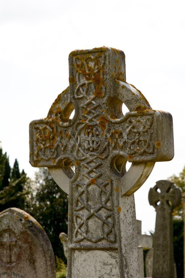 Keltisch die grafzerkkruis in geel korstmos wordt behandeld royalty-vrije stock fotografie