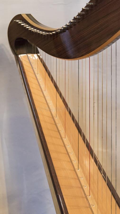Keltisk irländsk harpa royaltyfri fotografi