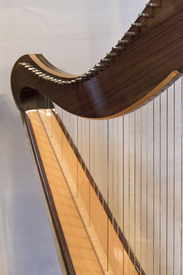Keltisk irländsk harpa royaltyfria foton