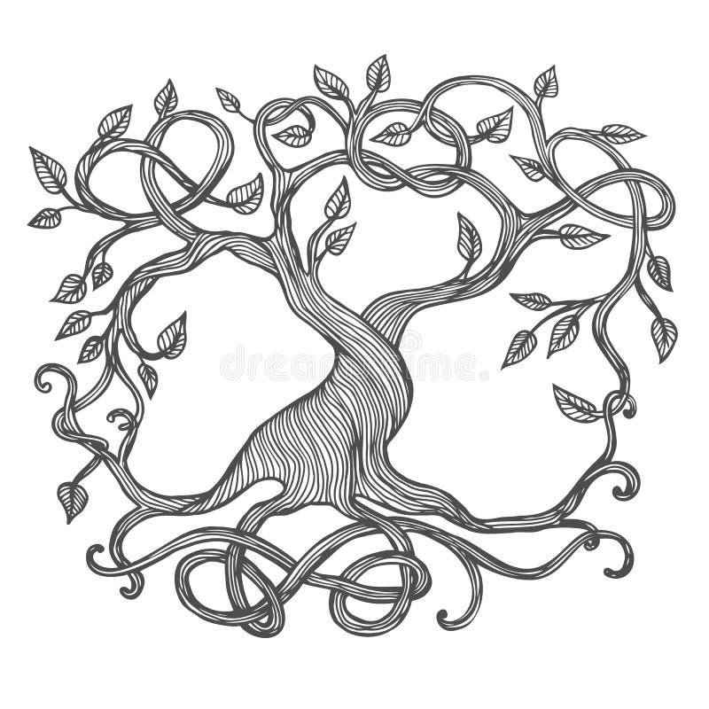 Keltiskt träd av liv vektor illustrationer