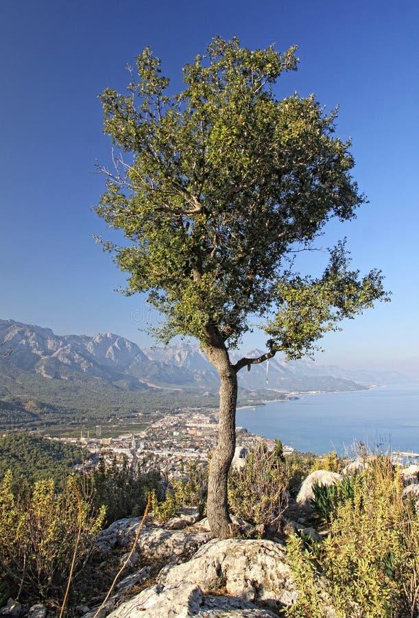 Kemer City, Antalya Province, Turkey Royalty Free Stock Image