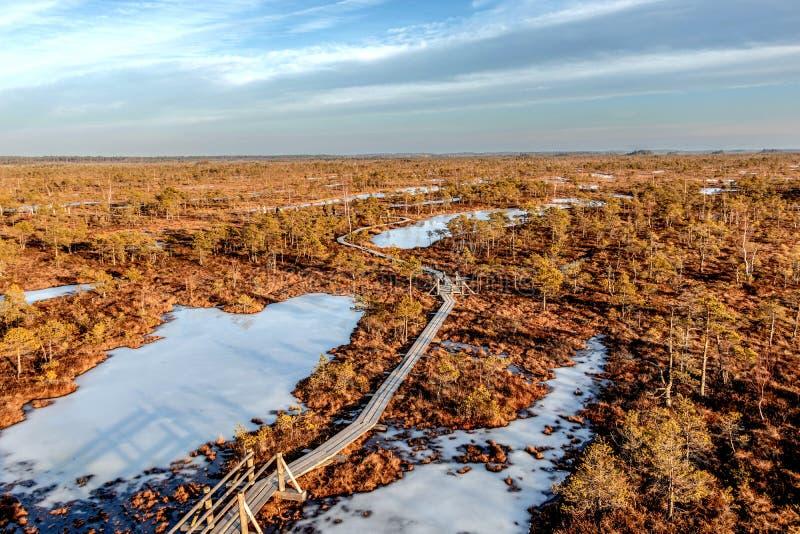 Kemeri park narodowy, Latvia, Północny Europa: Sceniczny krajobraz od obserwacji platformy z nad jesień barwił flory obrazy royalty free