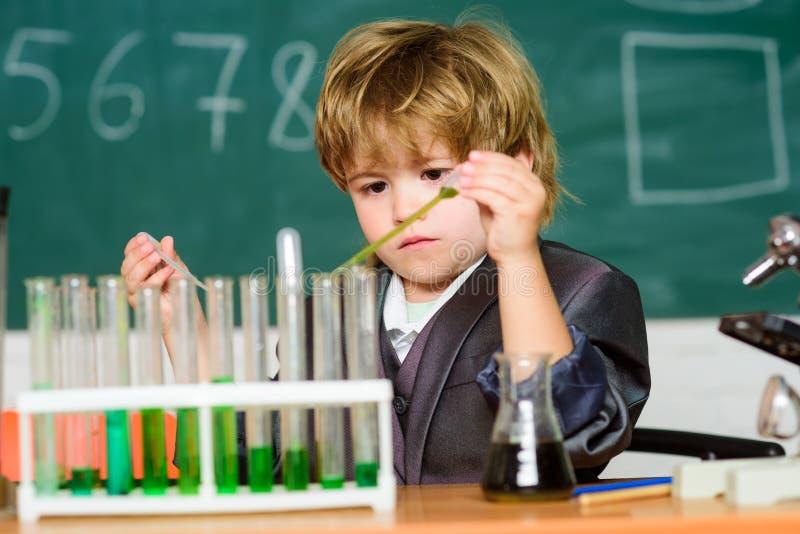 Kemi för pojkeprovrörflytande Chemical analys Begåvad kemi för forskareKid studie Bioteknik och apotek royaltyfria bilder