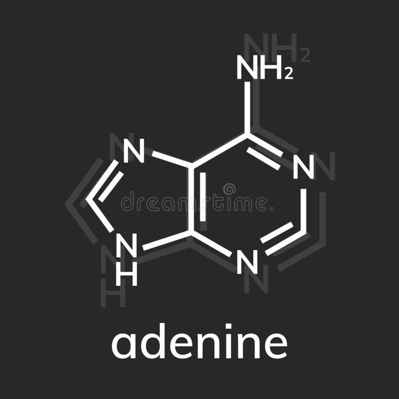 Kemisk formel för Adenine vektor illustrationer