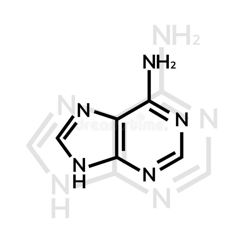 Kemisk formel för Adenine royaltyfri illustrationer