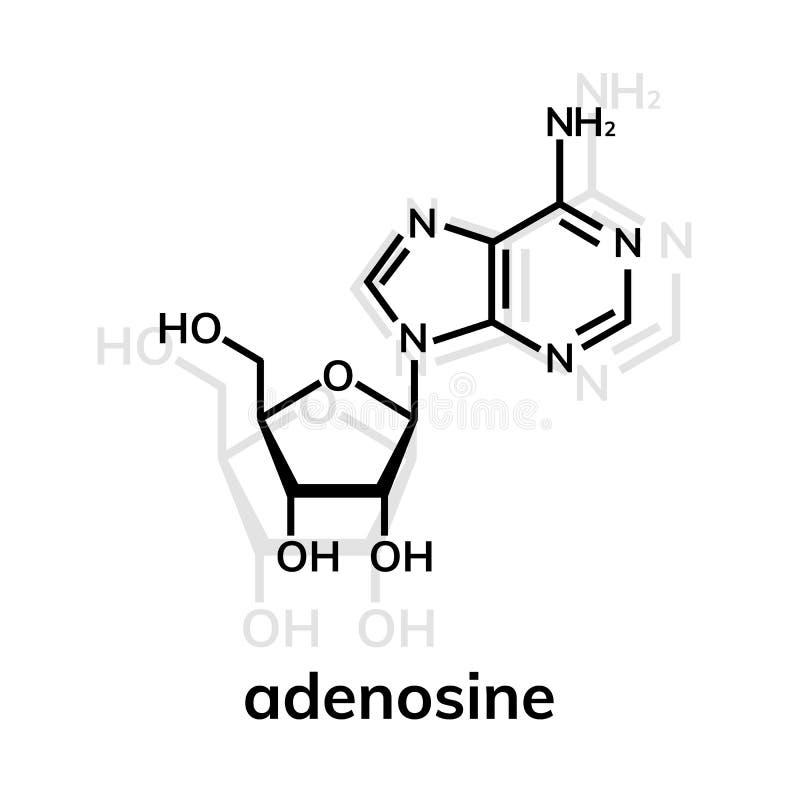 Kemisk formel för Adenosine royaltyfri illustrationer