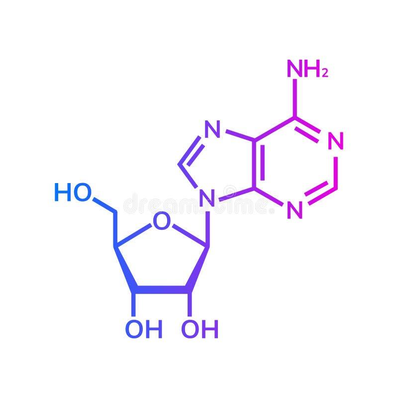 Kemisk formel för Adenosine vektor illustrationer