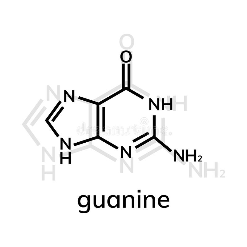 Kemisk formel för Guanine vektor illustrationer