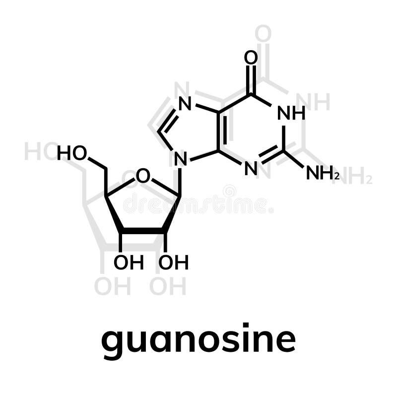 Kemisk formel för Guanosine royaltyfri illustrationer