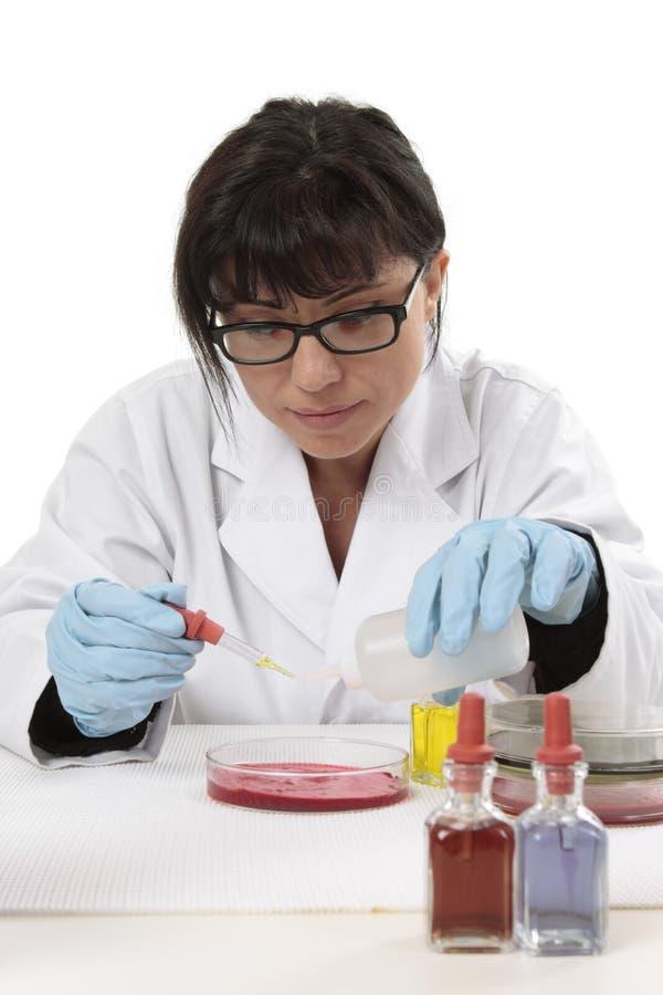 kemistforskarearbete royaltyfria bilder