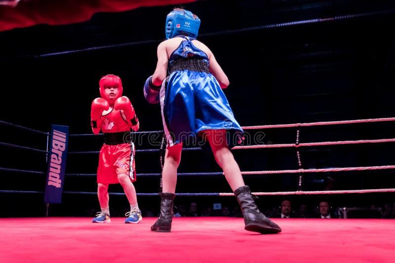 Ken Goff Memorial Boxing Classic foto de stock royalty free