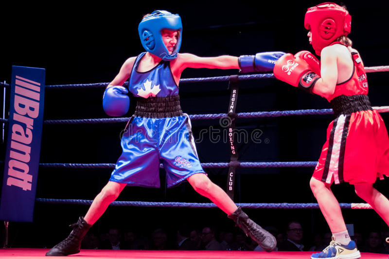 Ken Goff Memorial Boxing Classic imagens de stock