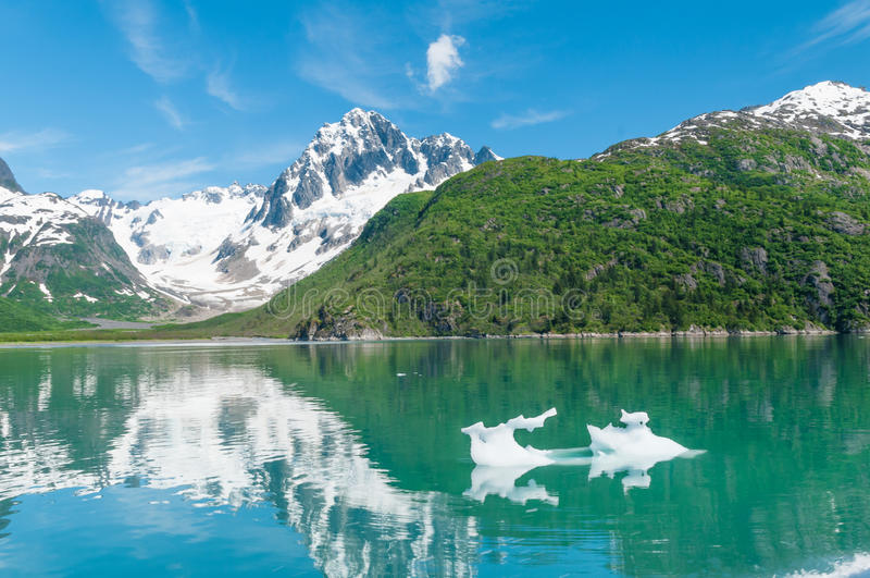 Kenai-Fjorde lizenzfreies stockbild