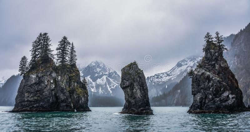 Kenai Fjords parki narodowi, Alaska, usa zdjęcie stock