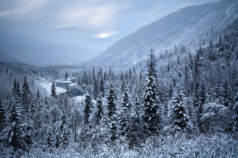 Kenai Peninsula, Alaska. Where Santa Claus Must Live, Kenai Peninsula, Alaska royalty free stock photo