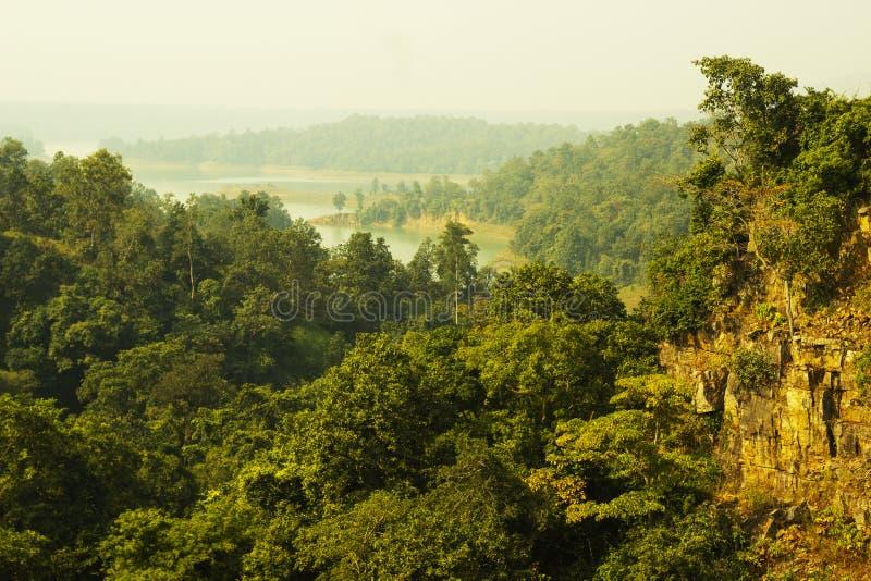 Kendai秋天野餐斑点在korba,chhattisgarh,印度 免版税库存图片