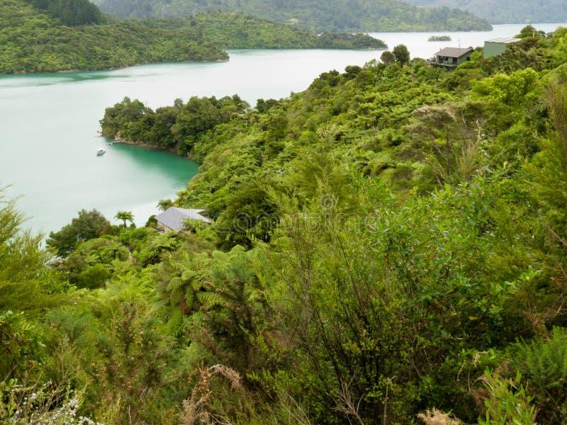 Kenepuru Ton der Marlborough Töne, Neuseeland stockfotografie