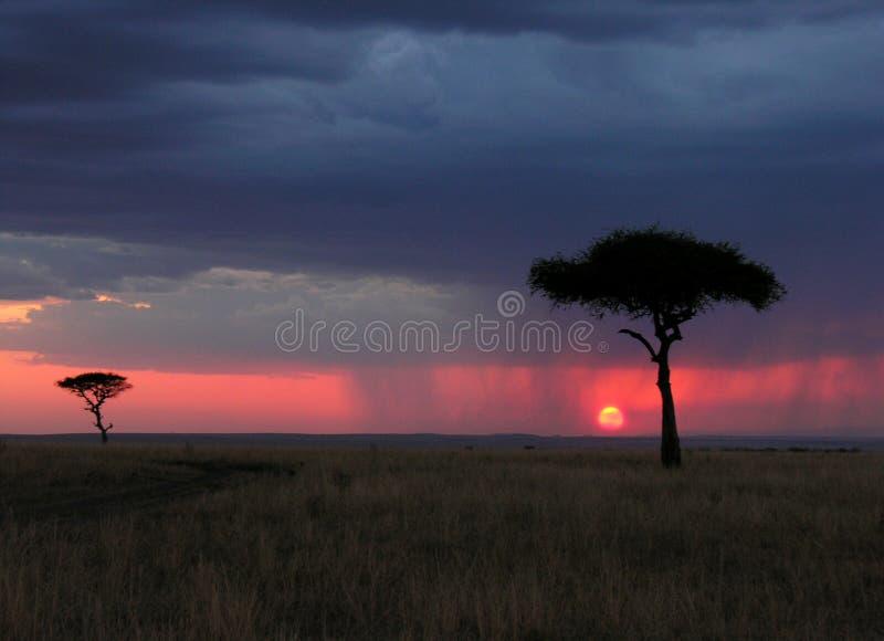 kenia στοκ φωτογραφία με δικαίωμα ελεύθερης χρήσης
