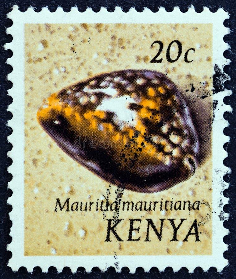 KENIA - CIRCA 1971: Een zegel in Kenia wordt gedrukt toont Gebochelde cowry Mauritia-mauritiana, circa 1971 die stock foto